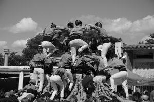empresa, organizacion coaching sistémico